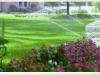 irrigation-6